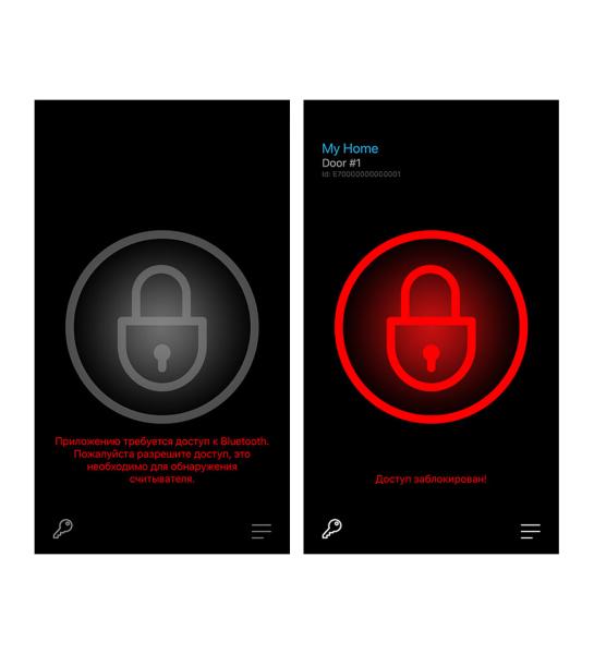 ELS Mobile Tag Мобильный токен