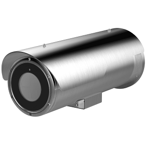 IP-камера Hikvision DS-2XE6452F-IZHS
